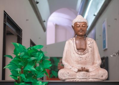 Beleza e Natureza buddha